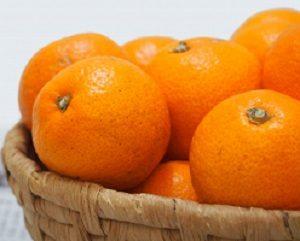 みかん β-クリプトキサンチン 効率よく摂る ヒルナンデス